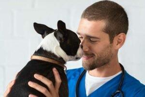 tecnologia veterinaria
