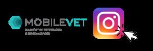 instagram mobilevet